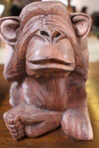 monkey-236864_640